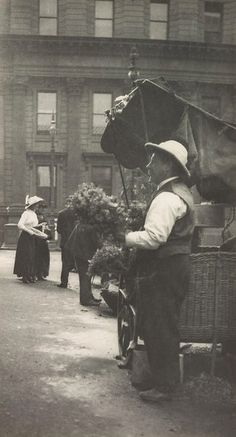 Flower seller, Macquarie Place by Harold Cazneaux, pre1920