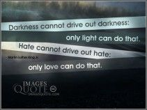 Hate cannot drive out hate - Hate Quote