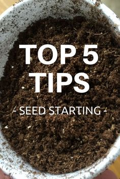 Top 5 Tips for Seed Starting - Gardening Know How's Blog