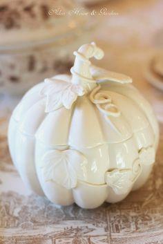 Love this White Pumpkin