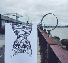 Nantes est renversante !  #Nantes #hangar #hangaràbananes #illustration #chaton #iledenantes #dessin #drawing #buren