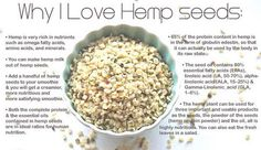 Hemp Seed Nutrition - https://elixinol.com/blog/hemp-seed-nutrition?utm_source=rss&utm_medium=Friendly+Connect&utm_campaign=RSS #cbd #hemp