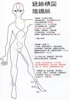 陰蹻脈、伍行庵考(Ver2012) ーYin heel vessel, Acupunture points, my theory(Ver2012)ー
