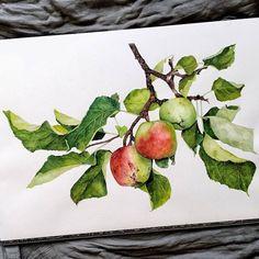 Apple branch, for a Milton fan - WetCanvas