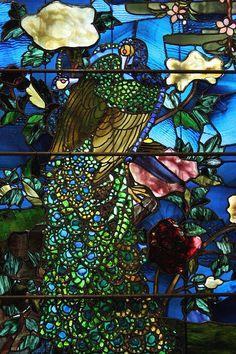Peacock Stained Glass | Peacock - stained glass | Flickr - Photo Sharing! Stained Glass Church, Stained Glass Lamps, Stained Glass Designs, Stained Glass Panels, Art Of Glass, Cut Glass, Mosaic Art, Mosaic Glass, Tiffany Glass