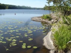 Lake Kukkia, Häme, Finland