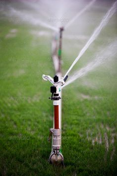 Modern device of irrigation garden. Irrigation system – technique of watering in the garden. Lawn sprinkler spraying water over green grass. http://photodune.net/item/modern-device-of-irrigation-garden/8120584