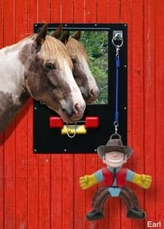 Neigh Station Earl by Other. $89.99. Neigh Station Relieve your horses boredom and stress with the innovative Neigh Station! From the makers of the Equine Scratcher, the Neigh Station is an activity center for your horse. Horses will stay busy with all of the great feautres. Shatterproof Mirror provides visual contact for the horse. Sliding Latch provides oral stimulation to help curb cribbing and chewing. Detachable toy on a rope keeps horses occupied and engaged (toys ...