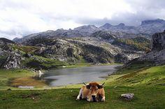 Spain. Lakes in Covadonga , Asturias. Lagos de Covadonga Asturias.