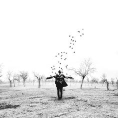 Fall by Hossein Zare Bird People, In Pursuit, World's Biggest, Big Love, Black And White Pictures, Thought Provoking, Photo Galleries, Fine Art, Concert