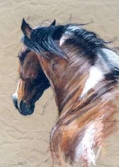 """Beautiful Equine horse LE print 'Billowing' from an original pastel by Heather Irvine 12""""x16"""" induvidually signed and mounted"""