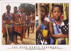Swaziland - The Reed Dance Ceremony