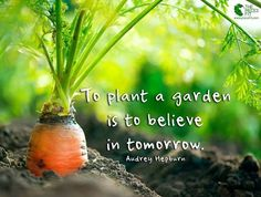 To plant a garden is to believe in tomorrow!   Thank you Eat Local Grown for the image :)