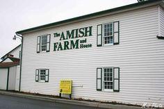 M-ii Photo : La Pennsylvanie - Ferme Amish Lancaster