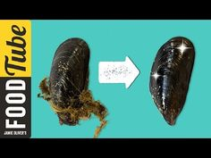 How To Prepare Mussels | 1 Minute Tips | Bart's Fish Tales - YouTube