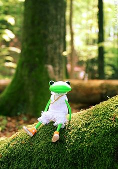 Another day in paradise – Wonder Frog (1)