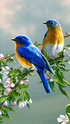 Птицы на цветущей веточке 360х640