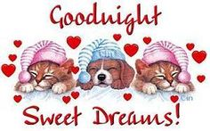 Images and ecards of Good Night - Greetings for social networks or to send by email Good Night For Him, Good Night Prayer, Cute Good Night, Good Night Friends, Good Night Blessings, Good Night Wishes, Good Night Sweet Dreams, Good Night Moon, Good Night Image