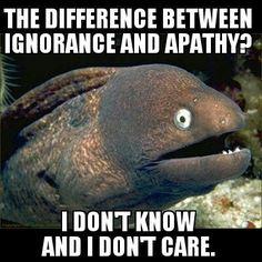 bad joke eel - hahahaha