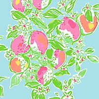 Pink Lemonade Lilly Pulitzer Patterns, Pink Lemonade, All Print, Fabric Patterns, Arts And Crafts, Lily, Handmade Gifts, Hand Painted, Crafty