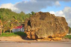 Round Rock Cattlewash Barbados