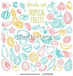 Set Of Various Doodles, Hand Drawn Rough Simple Sketches Of Different Kinds Of Tropical Fruits. Vector Freehand Illustration Isolated On White Background. - 247598296 : Shutterstock