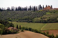 Siena to Volterra > Colle di Val d'Elsa