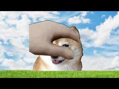 pet the doge - YouTube Shiba Inu Doge, Pets, Youtube, Cute Stuff, Cute, Youtubers, Youtube Movies, Animals And Pets