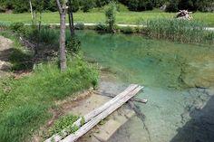 korana river in summer