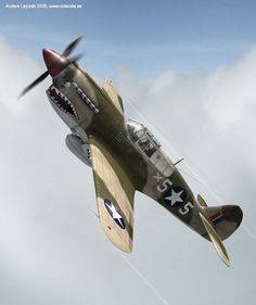 Image result for Warbird Picture Galleries