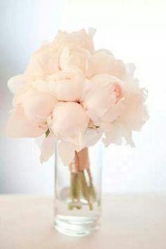 So pretty! <3