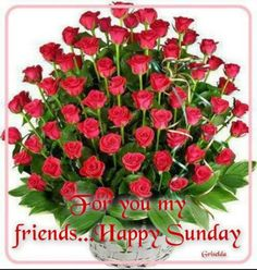 Bundle of reds. Happy Sunday Pictures, Happy Sunday Quotes, Blessed Sunday, Red And White Roses, Red Roses, Pretty Roses, Beautiful Flowers, Sunday Greetings, Festival Image