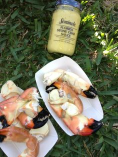 Lobster Rolls and More!!! on Pinterest | Lobsters, Lobster Rolls and ...