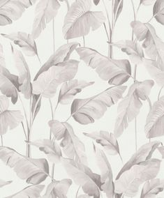 Beige, Abstract, Artwork, Plants, Fair Grounds, Wall, Palm Plants, Grey Sheets, Exhibitions