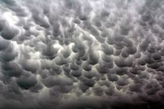 The Mammatus Clouds are a sign of extreme weather beginning to form.