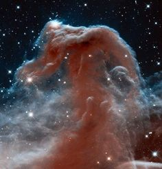 Part of the larger constellation Orion, the Horsehead Nebula is captured in infrared wavelengths for the first time. (Image courtesy STScI/AURA/ESA/NASA)    See more of the week's best space photos: http://on.natgeo.com/11CwnUo