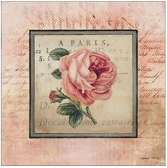 Vintage Prints, Vintage Art, Decoupage Vintage, Paris Art, Paris Decor, Botanical Art, Vintage Images, Vintage Pictures, Retro