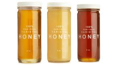 Bee Raw Honey Collection by
