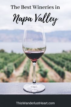 Planning a trip to Napa Valley? Check out my list of the best wineries in Napa Valley for first-time visitors including the best time to visit Napa. Best Wineries In Napa, Napa Valley Wineries, Usa Travel Guide, Travel Usa, Travel Tips, Vacation Travel, Travel Goals, Travel Guides, Travel Stuff