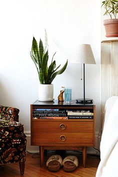 Living in a small, urban apartment, you start to crave contact with nature—or at least a little greenery. And research has shown you really do need it for good health and happiness. Urban Apartment, Apartment Living, Apartment Plants, Minimalist Apartment, Apartment Layout, Apartment Interior, Best Indoor Plants, Cool Plants, Indoor Trees