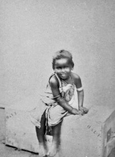 (Somali) collection-du-prince-roland-bonparte 12