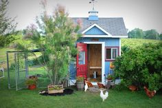 chicken coop obsession - Google Search