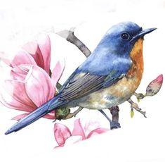 Watercolor Bird, Watercolor Animals, Watercolor Paintings, Bluebirds, Gouache, Paint Colors, Beast, Oriental, Asian