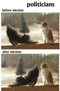 Politicians Before and After Elections ~ Facebook Funny Pictures, Funny Images, Jokes, Celebrity Jokes, Cricket Jokes, Bollywood Jokes