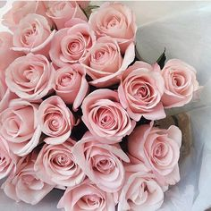 Bouquet Of Light Pink Roses My Flower, Pretty In Pink, Beautiful Flowers, Pretty Roses, Flower Ideas, Beautiful Images, Beautiful Gardens, Beautiful Dresses, Beautiful People