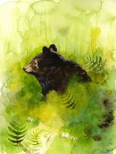 Meadow Bear in Meadow Limited Edition Archival von amberalexander, $40.00