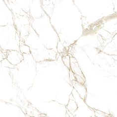 Calcutta gold marble sample