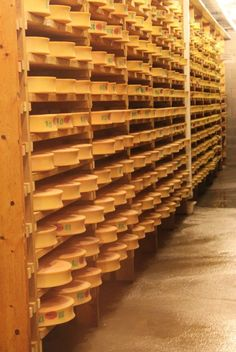 springbrook cheese cave