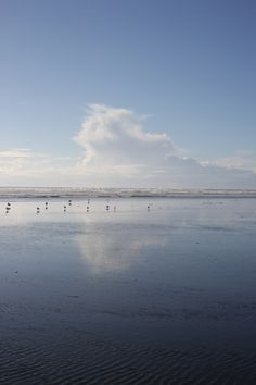 Otaki Beach Backdrops, Coast, Beach, Water, Photography, Outdoor, Water Water, Fotografie, Outdoors