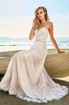 White bride dresses. Brides dream about finding the perfect wedding, however for this they require the ideal bridal wear, with the bridesmaid's dresses actually complimenting the wedding brides dress. These are a variety of tips on wedding dresses.